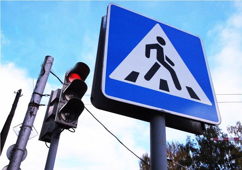 Заодин день работники ГИБДД оштрафовали вКалуге 40 пешеходов
