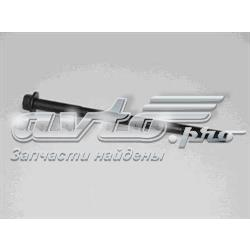 Фото: Болт головки блока цилиндров (ГБЦ) Chevrolet Aveo