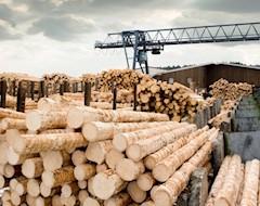 Канада инвестирует в производство деталей из древесины