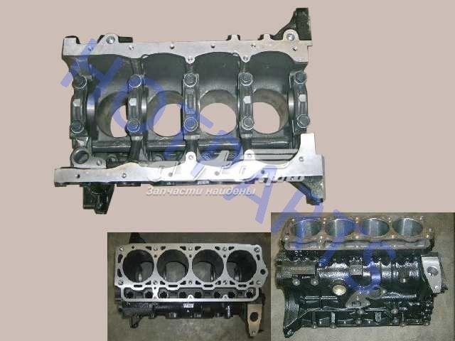 блок цилиндров двигателя  1002031E00