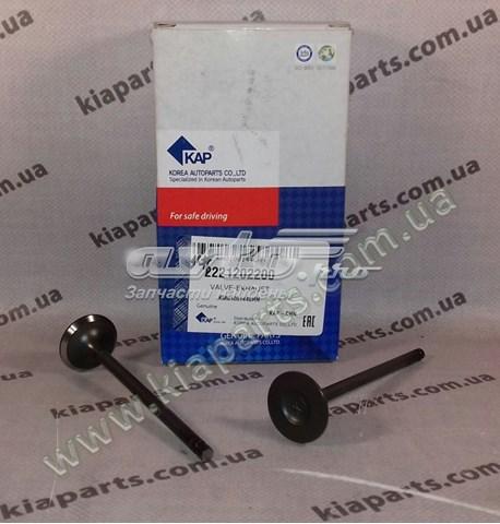 клапан выпускной  Z01VLVCN01133
