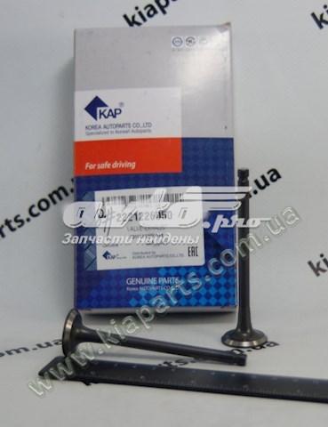 клапан выпускной  Z01VLVCN01118
