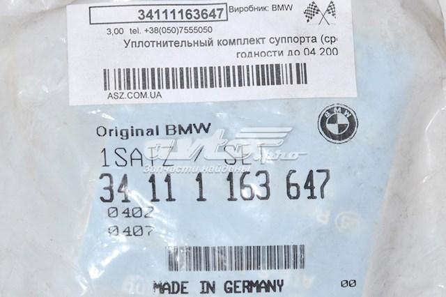 Фото: Супорт гальмівного, переднього BMW X6