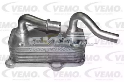 радиатор масляный  V30601266